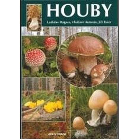 Kniha houby